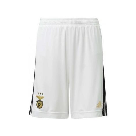 Adidas Domácí šortky Benfica Bílá