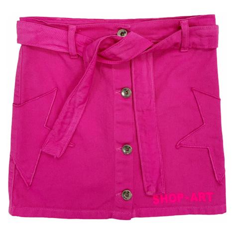 Shop Art 021176 Růžová