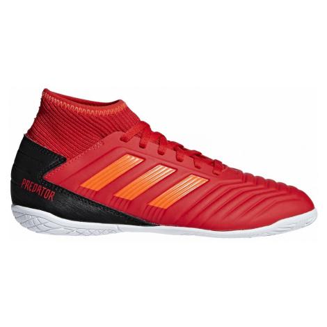 Dětské sálovky adidas Predator 19.3 IN Červená / Černá