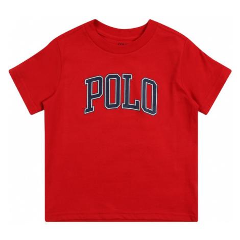 Polo Ralph Lauren Tričko červená / námořnická modř / bílá