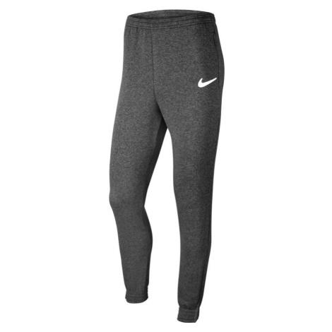 Tepláky Nike PARK20 Fleece Šedá