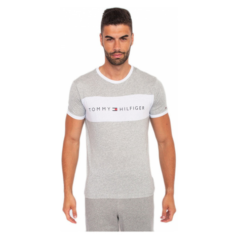 Men's T-shirt Tommy Hilfiger gray (UM0UM01170 004)