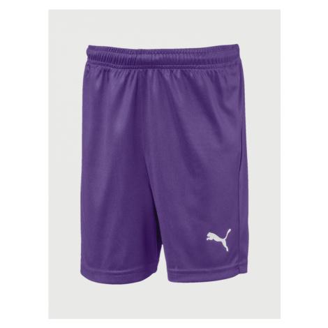 Liga Shorts Core Kraťasy dětské Puma Fialová