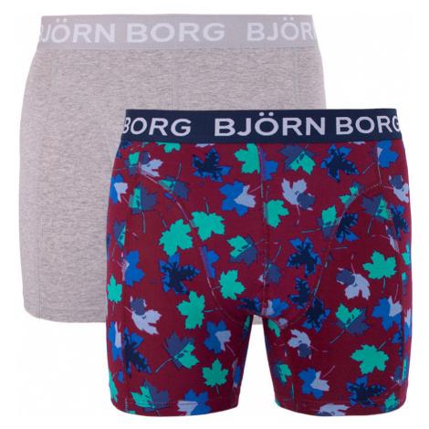 2PACK pánské boxerky Bjorn Borg vícebarevné (1841-1204-40501)