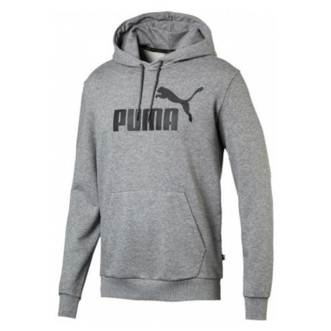 Mikina s kapucí Puma Essential Big Logo Hoodie Šedá / Černá