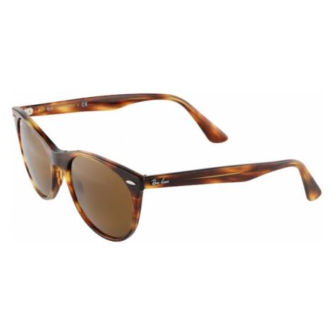 Ray-Ban Sluneční brýle hnědá