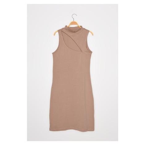 Trendyol Mink Collar Detailed Knitted Dress