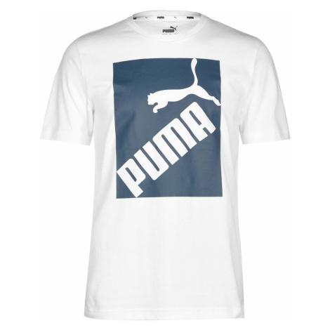 Pánské tričko Puma Big Logo QT