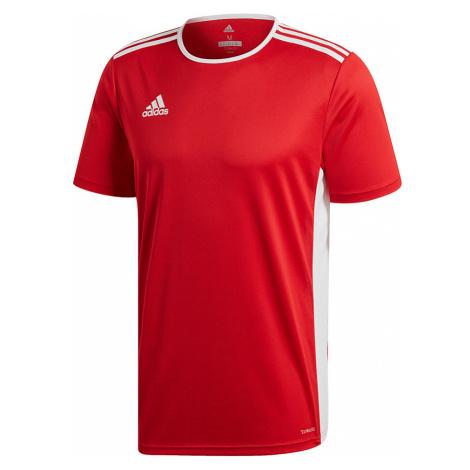 Dětské sportovní tričko Adidas
