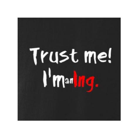 Trust me I´m an Ing. / Věř mi jsem Ing. - Mikina s kapucí hooded sweater