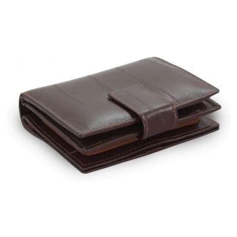 Tmavě hnědá dámská kožená peněženka Makenzie Arwel