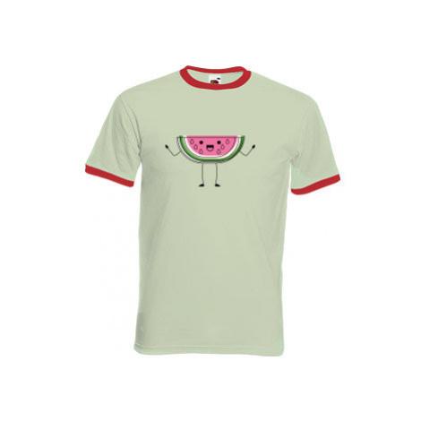 Pánské tričko s kontrastními lemy Meloun