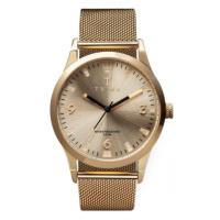 Triwa Watch