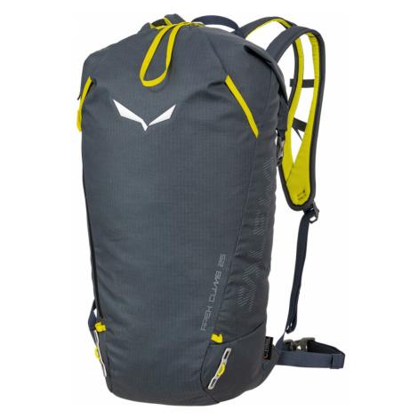Batoh Salewa Apex Climb 25 BP Barva: šedá