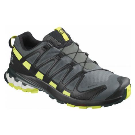 Salomon XA PRO 3D V8 GTX černá - Pánská běžecká obuv