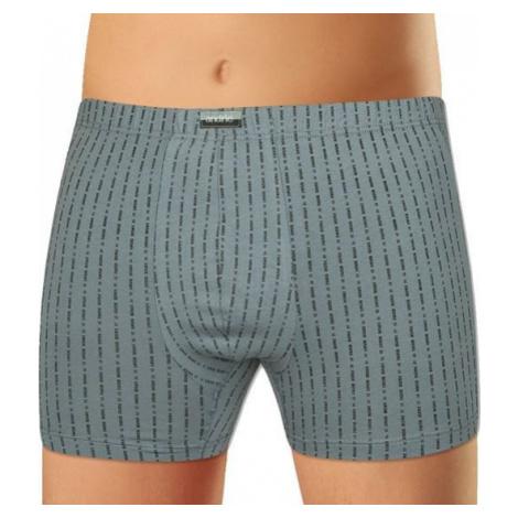 Pánské boxerky Andrie šedé (PS 5431 C)