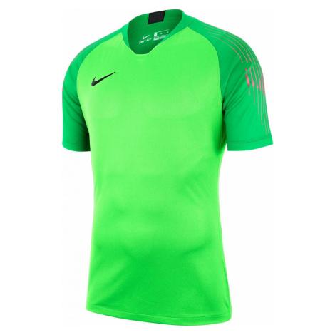 Dres Nike Gardien II GK JSY Zelená