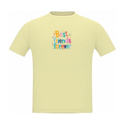 Pánské tričko Classic Heavy Best Friends