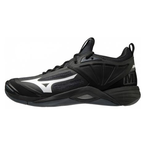 Pánská sálová obuv Mizuno Wave Momentum 2 Black/White