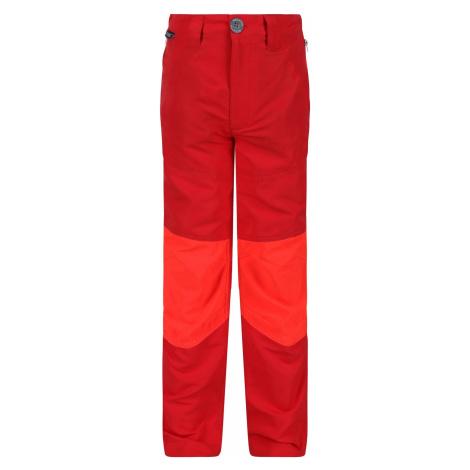 Dětské kalhoty Regatta SORCER IV oranžová