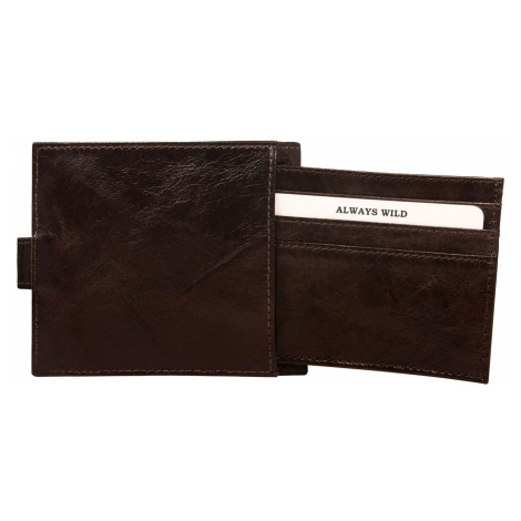 Pánská hnědá peněženka se sponou