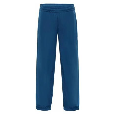 Dětské kalhoty Alpine Pro SESTO 3 INS. - modro-šedá