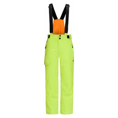 Kalhoty Descente PIPER zelená