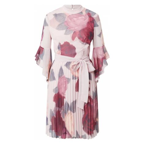 Chi Chi London Šaty růžová / pastelově růžová / vínově červená / pastelově zelená