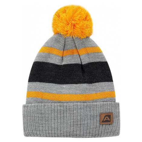 Zimní čepice Alpine Pro