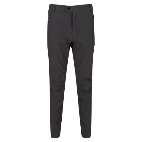Pánské kalhoty Regatta HIGHTON Trs antracitově šedá