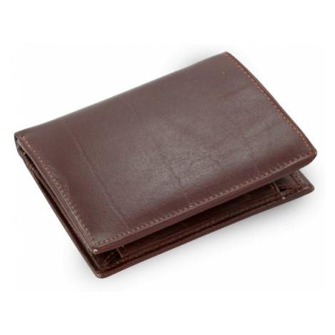 Tmavě hnědá pánská kožená peněženka Everett Arwel