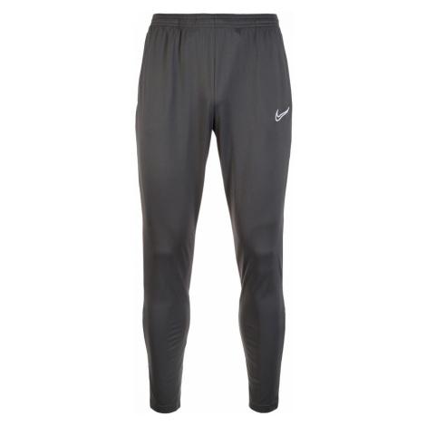 Tepláky Nike DRY Academy 19 Šedá