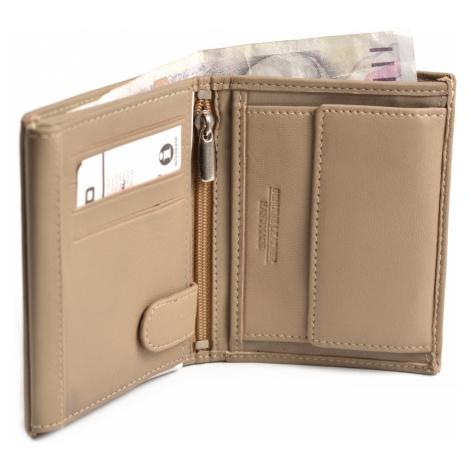BRIGHT Pánská kožená peněženka na výšku Béžová, 10 x 2 x 12 (KP00-P14785-18KUZ)