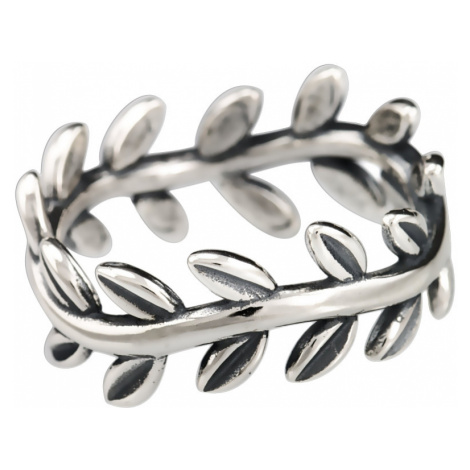 Linda's Jewelry Stříbrný prsten Laurel IPR013 Velikost: 54