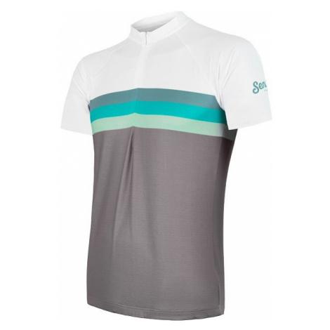 Pánský cyklodres SENSOR Cyklo Summer Stripe kr. rukáv šedá/zelená